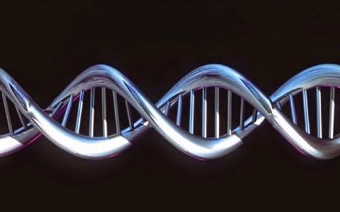 avtos-einai-o-neos-genetikos-xartis-ton-europaion