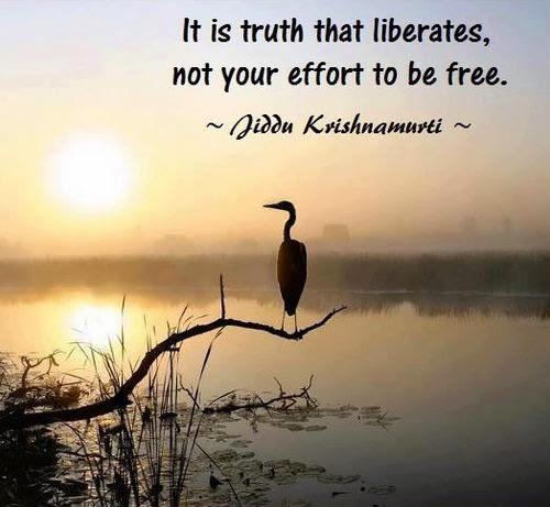 truth-liberates