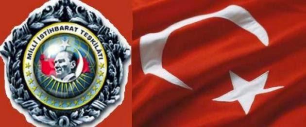 mit_turkey-630x262