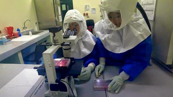 nekros-apo-ebola-stin-germania