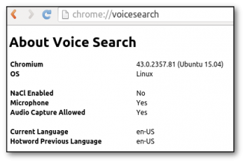 chrome-voicesearch
