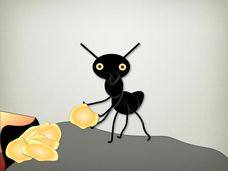 Ant.004