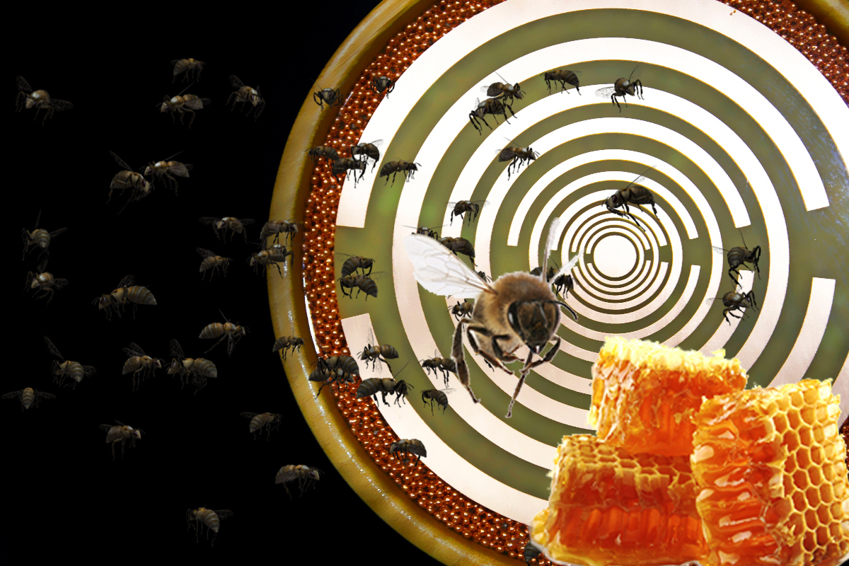 AgriFarm-Bamboo-MWO-orgonite-bee-honey-2