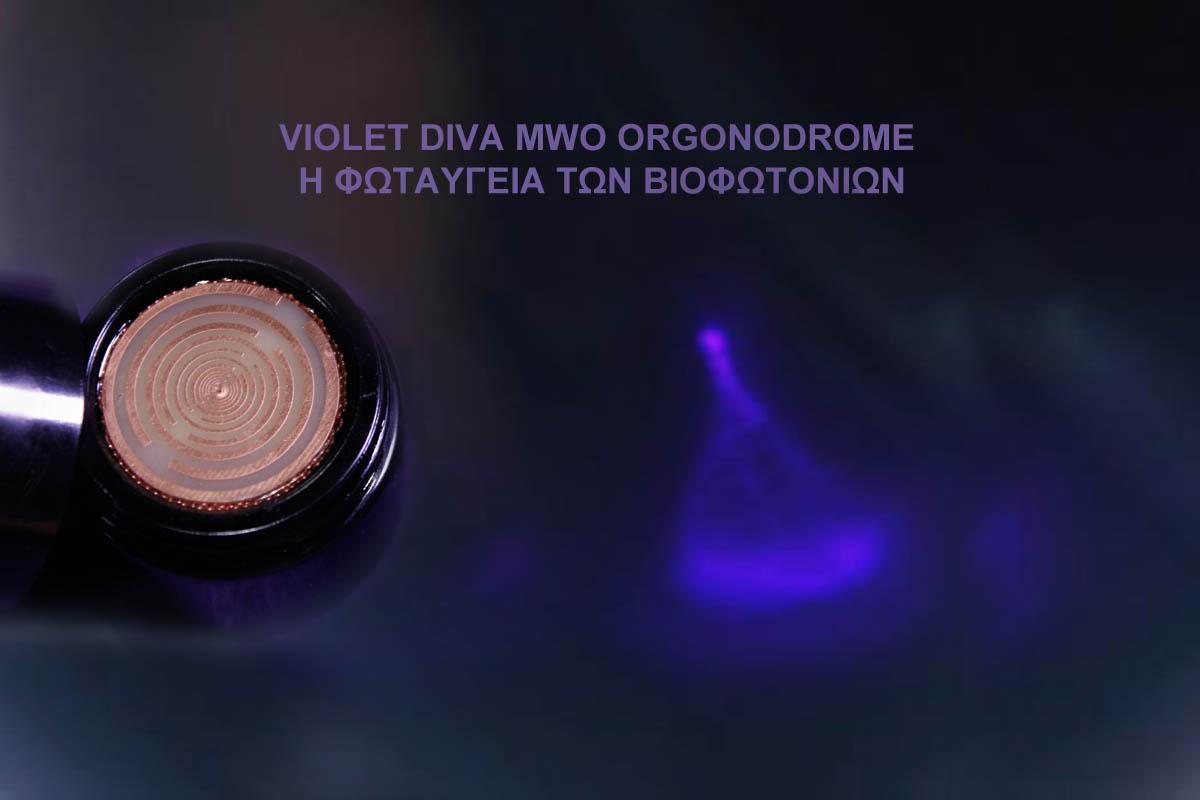 orgonodrome-violet-diva-MWO